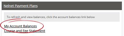 My Account Balances option under Nelnet Payment Plans