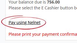 Pay using Nelnet option